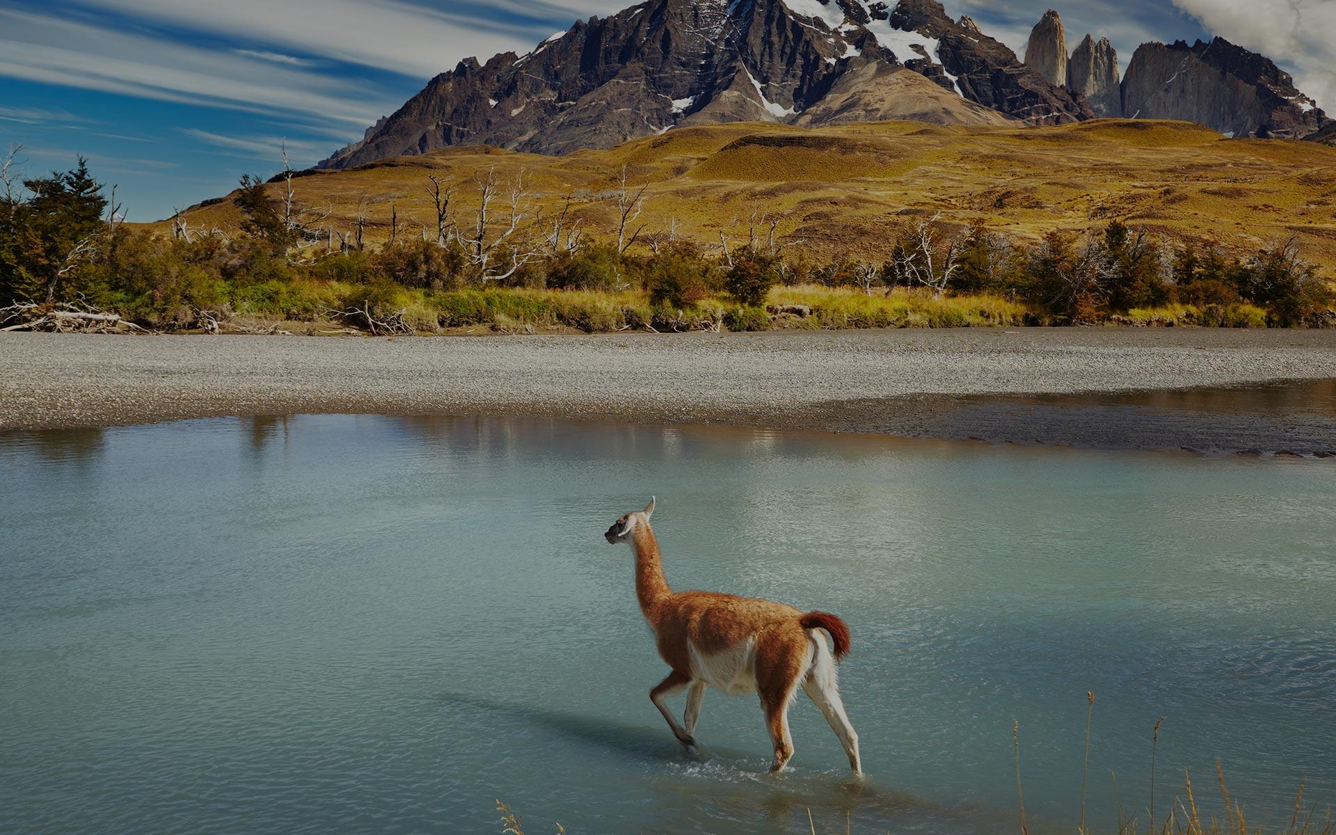 Udforsk det sydlige Amerika